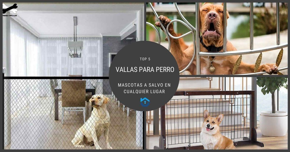5 Vallas para perro seguras y efectivas